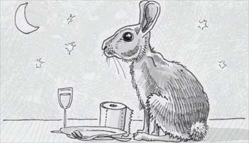 Rabbits chew cud?