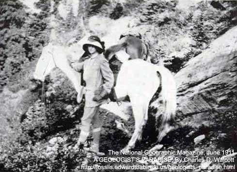 Burgess Trail