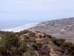 Del Mar Formation